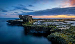 Фото Австралия Берег Вечер Рассветы и закаты Небо Мельбурн Мох Природа