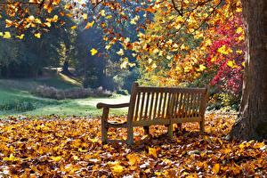 Картинки Осень Парки Скамья Листья