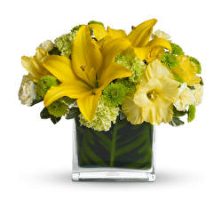 Обои Букеты Лилии Хризантемы Орхидеи Белый фон Ваза Желтый Цветы фото
