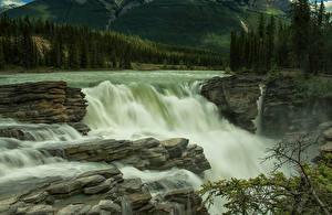 Фото Канада Парки Водопады Джаспер парк Athabasca Falls Природа