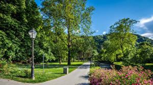 Картинки Загреб Парки Хорватия Деревья Уличные фонари Тротуар Samobor Природа