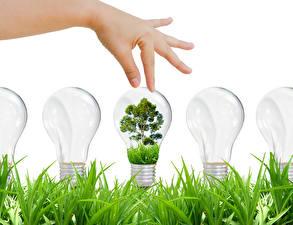 Обои Креатив Пальцы Руки Лампочка Трава Деревья Природа