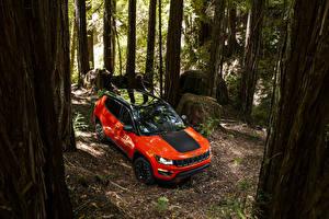 Обои Jeep Оранжевый 2017 Compass Trailhawk Автомобили фото