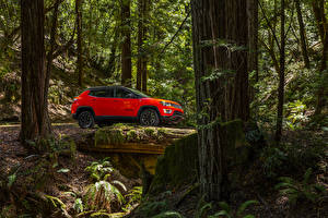 Фотография Джип Красный Сбоку 2017 Compass Trailhawk Автомобили