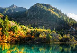 Обои Цзючжайгоу парк Китай Парки Горы Осень Озеро Пейзаж Деревья Природа фото