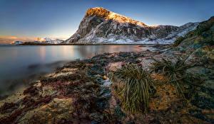 Обои Лофотенские острова Норвегия Пейзаж Горы Побережье Снег Kvalvika Beach Природа фото