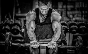 Фото Мужчины Бодибилдинг Руки Штанга Мускулы Физические упражнения