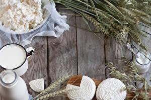Картинка Творог Молоко Сыры Пшеница Колос Доски Еда