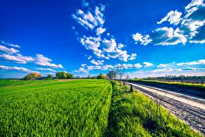 Обои Дороги Поля Небо Облака Природа фото
