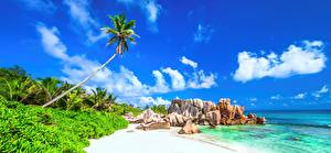 Обои Пейзаж Небо Тропики Побережье Море Пляж Природа фото