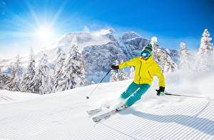Обои Лыжный спорт Зима Горы Мужчины Снег Солнце Ель Шапки Очки Спорт Природа фото