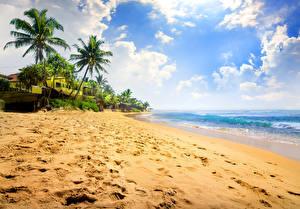 Фото Тропический Берег Небо Море Пальма Песка Облака Пляжи Природа