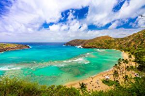 Картинки Тропики Берег США Океан Гавайские острова Пляж Облака Бухты Природа