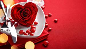 Обои День святого Валентина Розы Крупным планом Красный Сердце Тарелка Цветы