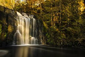 Фотографии Водопады Осенние Скала Мох Деревья