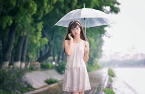 Фотографии Азиаты Дождь Зонт Платье Девушки
