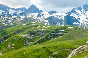Фотографии Австрия Горы Альп Мох Снега Холмы Природа