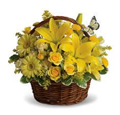 Картинка Букеты Лилии Розы Герберы Белым фоном Корзинка Желтых Цветы