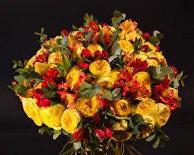 Фото Букеты Альстрёмерия Пионы Черный фон Цветы