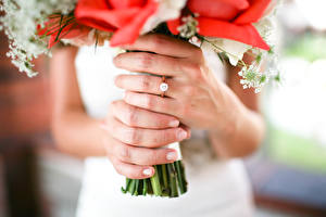 Фотографии Пальцы Букеты Крупным планом Руки Кольцо Невеста