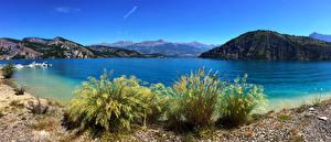 Обои Франция Побережье Бухта Кусты Calanque Port Miou Provence Природа фото