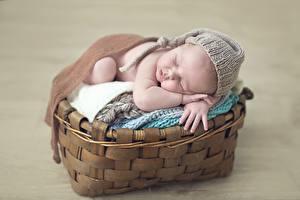 Обои Младенцы Спящий Корзины ребёнок