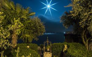 Фотографии Италия Побережье Ночь Луна Пальмы Деревья Sirmione Lombardy Природа