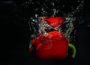 Обои Перец Вода Красный Черный фон Еда фото