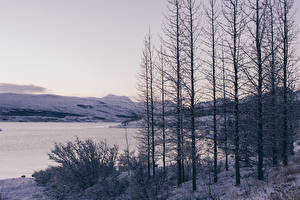 Обои Времена года Зима Реки Снег Деревья Природа фото