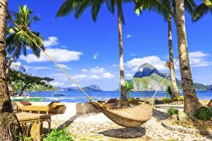 Картинка Тропики Небо Гамак Пальмы Пляжи Природа