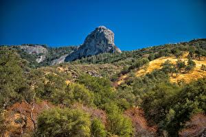 Фотография США Парк Утес Кусты Sequoia and Kings National Park Природа