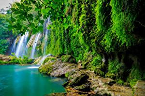 Обои Водопады Мох Природа