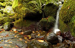 Фотографии Водопады Камни Мох Природа