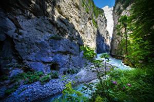 Картинка Берн Швейцария Речка Каньоны Утес Aareschlucht Природа