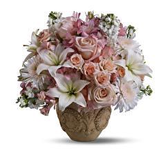 Обои Букеты Альстрёмерия Розы Лилии Белый фон Ваза Цветы фото