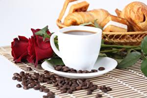 Фотографии Кофе Розы Завтрак Чашка Зерна Еда