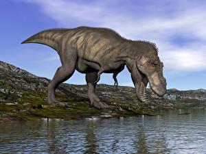 Картинка Динозавры Вода Крупным планом Животные 3D_Графика