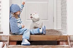 Обои Собака Девочка Болоньез Шапки Сидящие Дети
