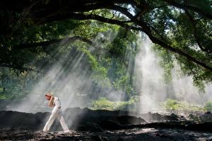 Фотографии Леса Лучи света Природа Девушки