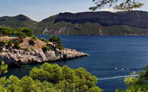Обои Франция Побережье Деревья Calanque Port Miou Provence Природа фото