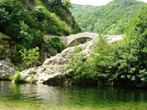 Обои Франция Реки Мосты Леса Ardeche Природа фото