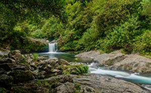 Фотографии Франция Водопады Камень Кусты Reunion