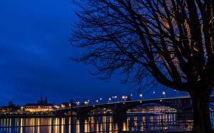 Обои Германия Реки Мосты Майнц Деревья Ночь Силуэт