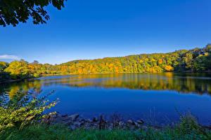 Обои Германия Реки Леса Осень Ulmen Природа фото