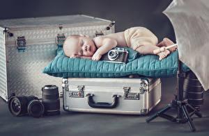 Обои Младенцы Спит Чемодан Фотоаппарат Дети фото