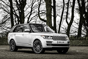 Обои Land Rover Белый Sport Автомобили фото