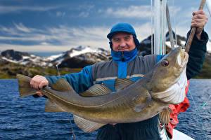 Картинки Рыбы Мужчины Ловля рыбы Животные