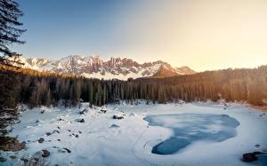 Фотография Горы Лес Озеро Пейзаж Италия Снеге Альп Carezza Südtirol Природа