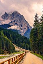 Картинка Горы Дороги Альпы Ель Забор Природа