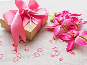Обои Орхидеи Розовый Подарки Бантик Сердце Цветы фото
